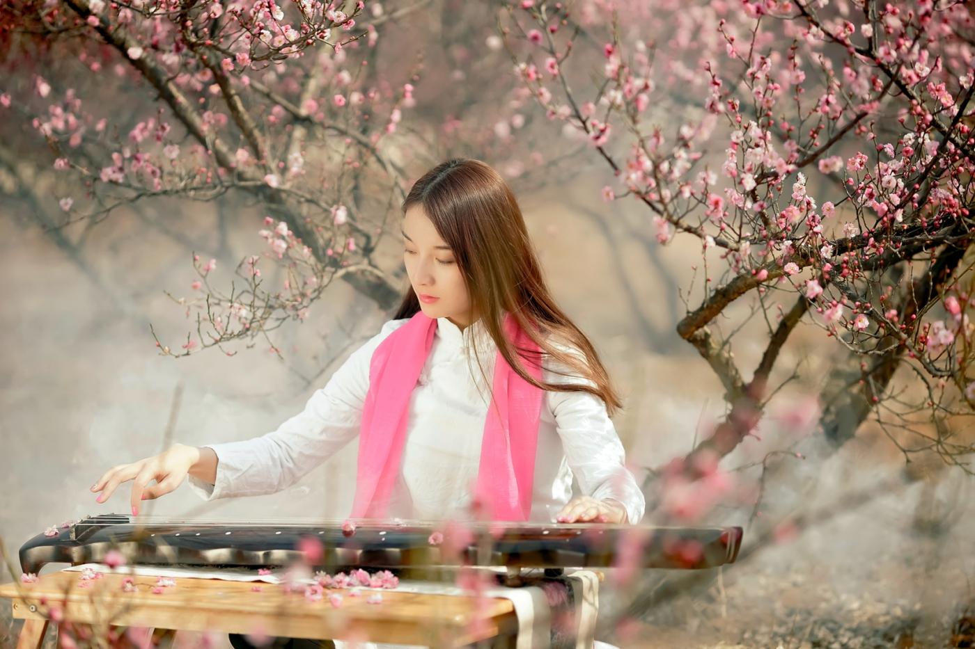 费县的春天从鲜花烂漫的梅林和女孩张诗奇的偶遇开始_图1-6