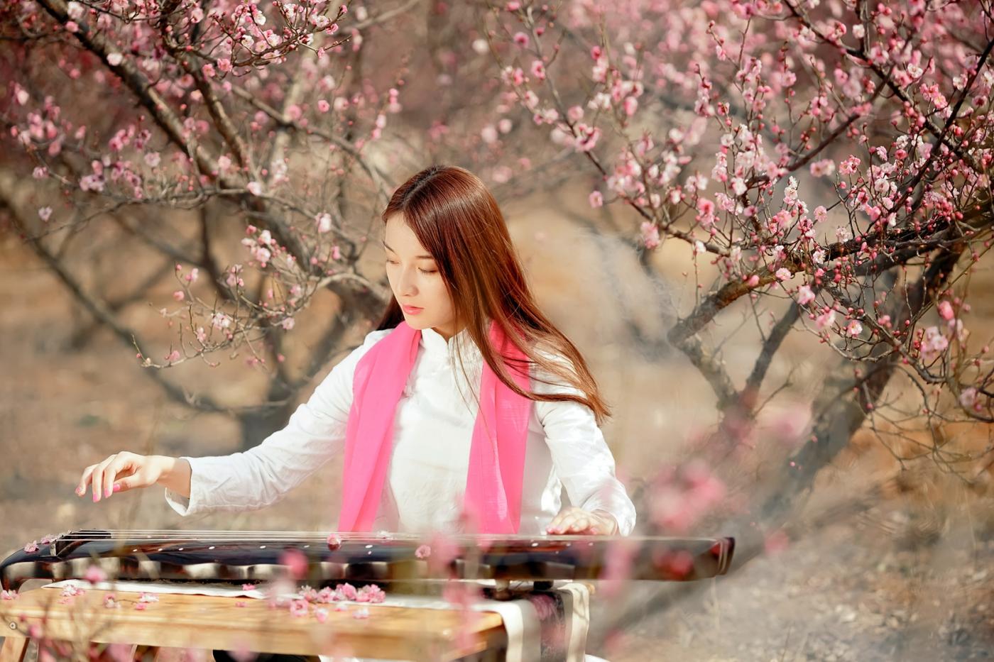 费县的春天从鲜花烂漫的梅林和女孩张诗奇的偶遇开始_图1-7