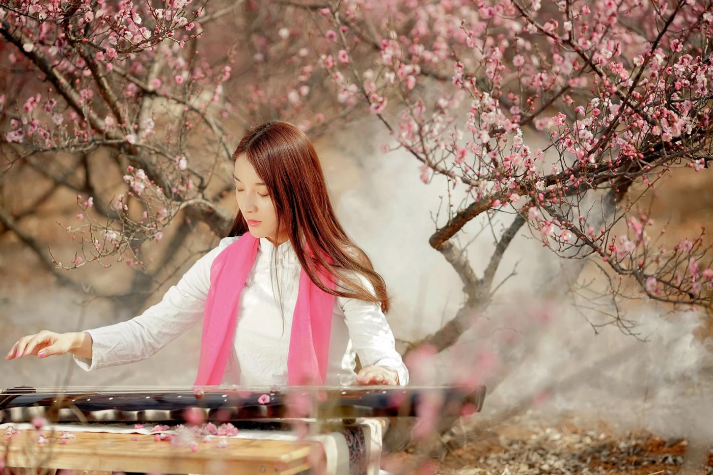 费县的春天从鲜花烂漫的梅林和女孩张诗奇的偶遇开始_图1-9