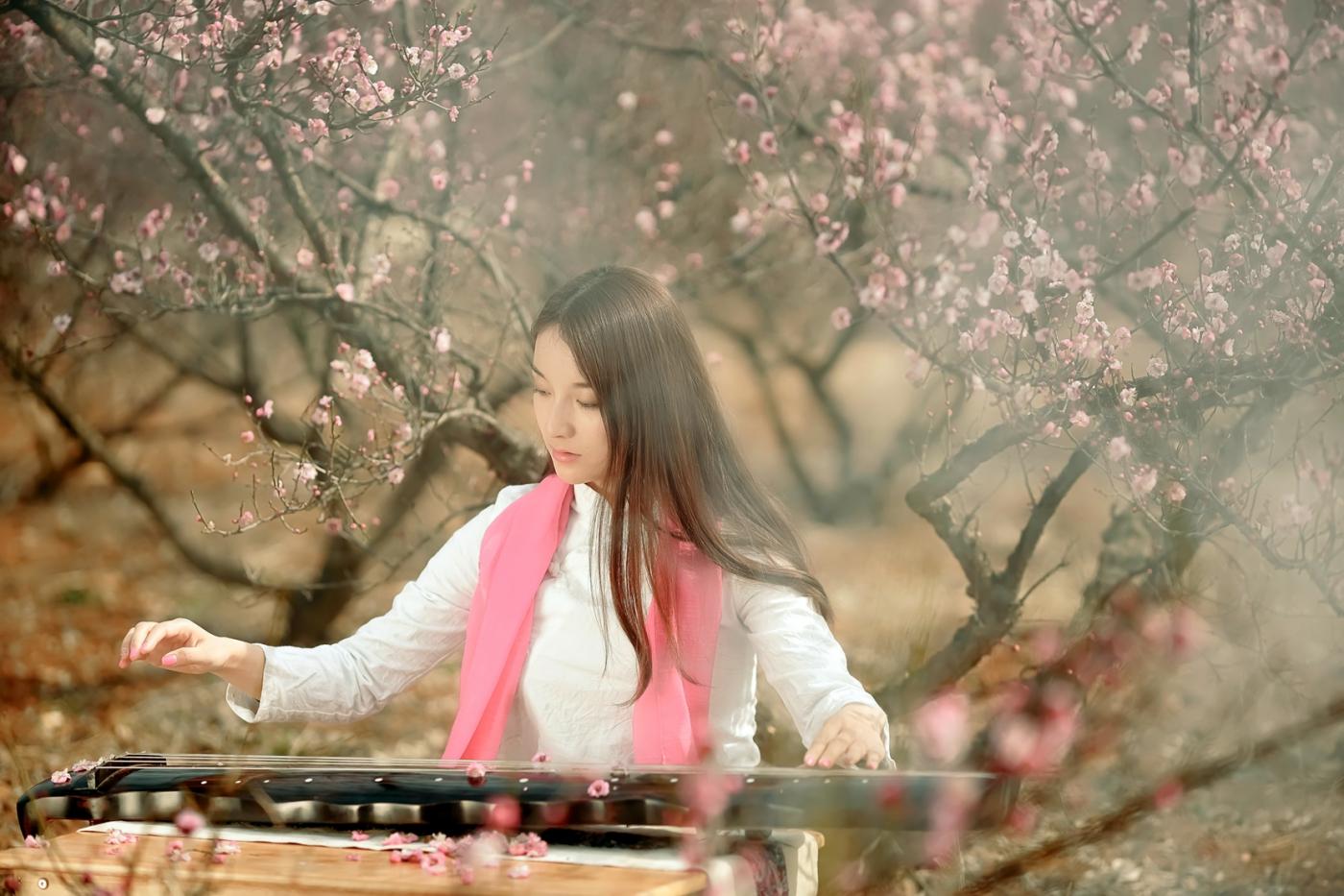 费县的春天从鲜花烂漫的梅林和女孩张诗奇的偶遇开始_图1-11
