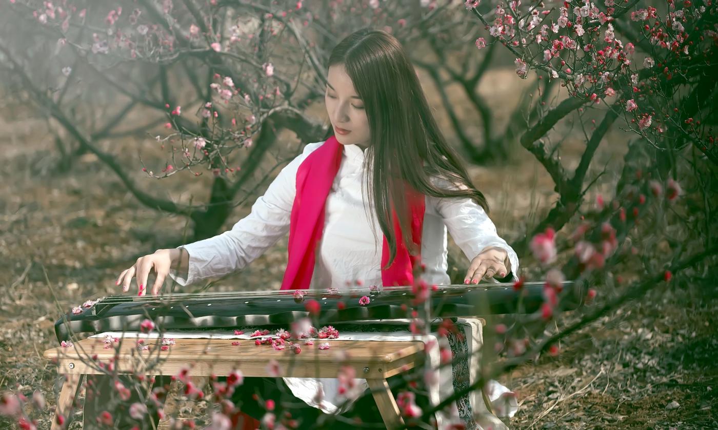 费县的春天从鲜花烂漫的梅林和女孩张诗奇的偶遇开始_图1-14