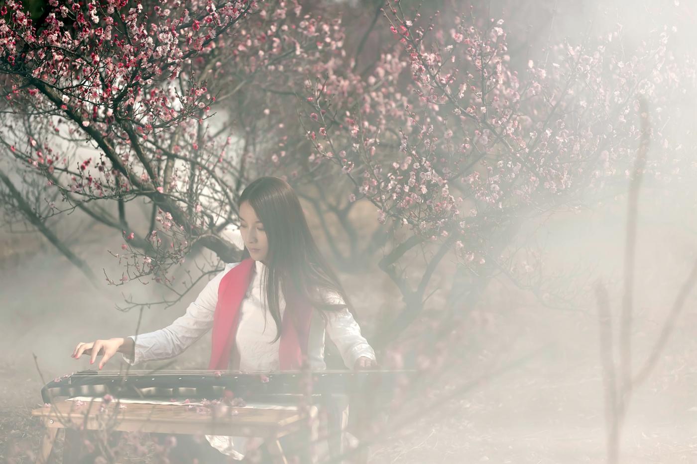 费县的春天从鲜花烂漫的梅林和女孩张诗奇的偶遇开始_图1-15