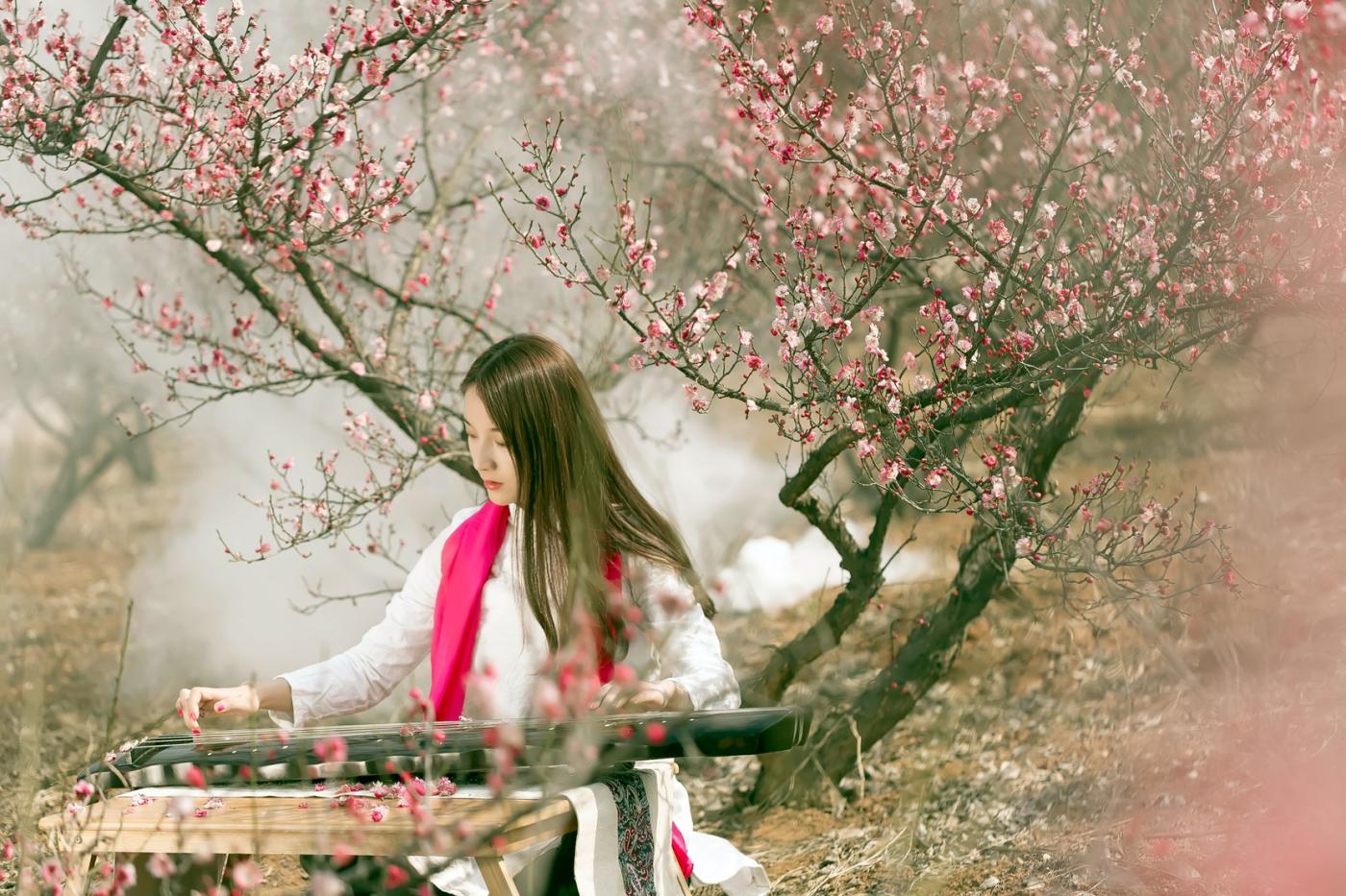 费县的春天从鲜花烂漫的梅林和女孩张诗奇的偶遇开始_图1-16