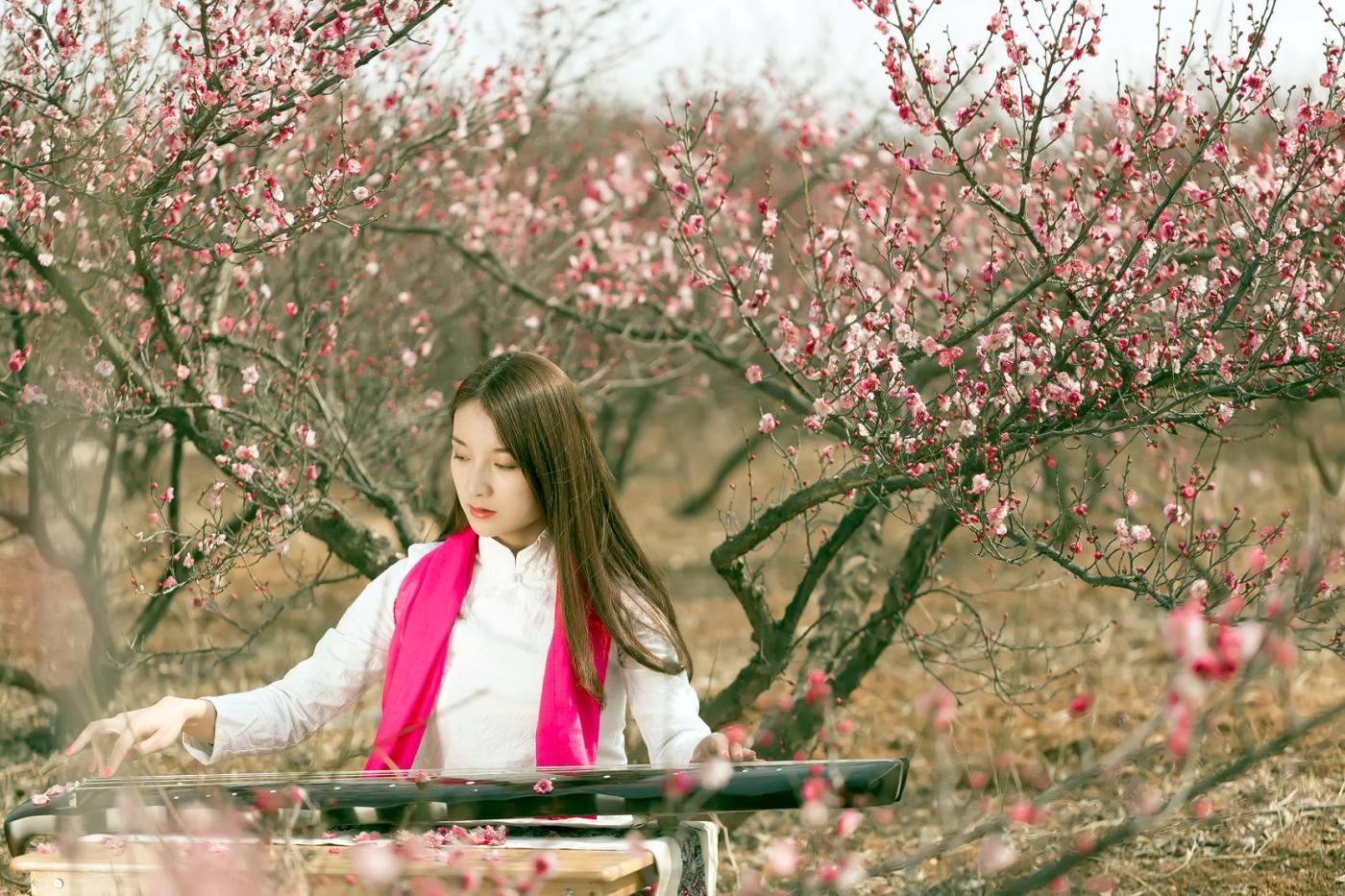 费县的春天从鲜花烂漫的梅林和女孩张诗奇的偶遇开始_图1-18