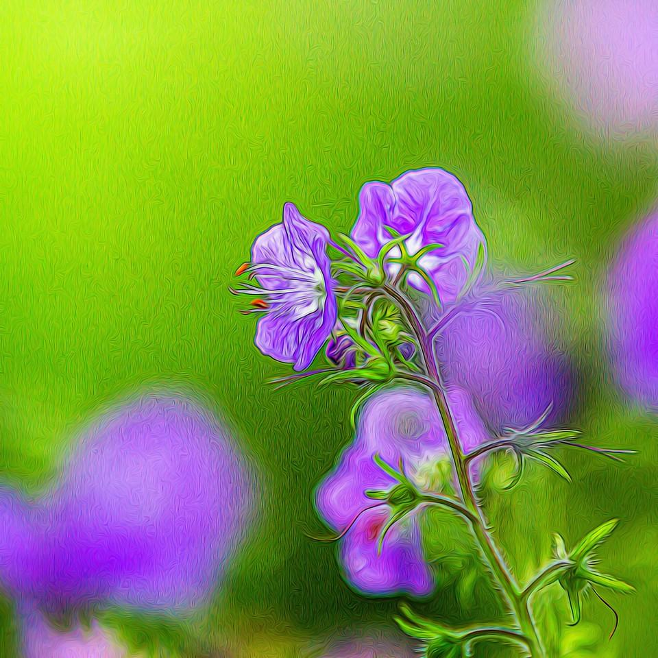 春色朦胧_图1-6