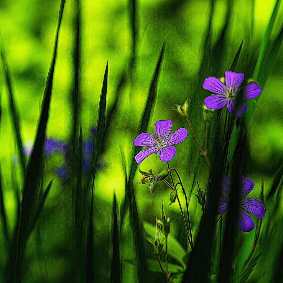 春色朦胧_图1-1