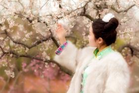 沂水雪山梅园走来一群赏梅踏春的沂蒙女孩