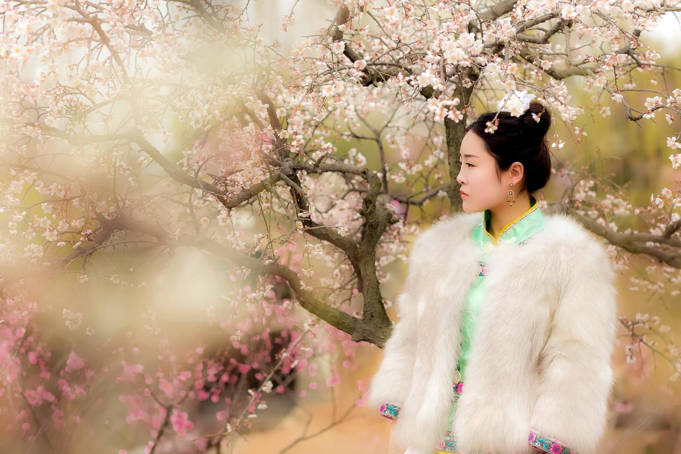 沂水雪山梅园走来一群赏梅踏春的沂蒙女孩 摄影人和女孩们成为梅园一道亮丽的风景线 ..._图1-2