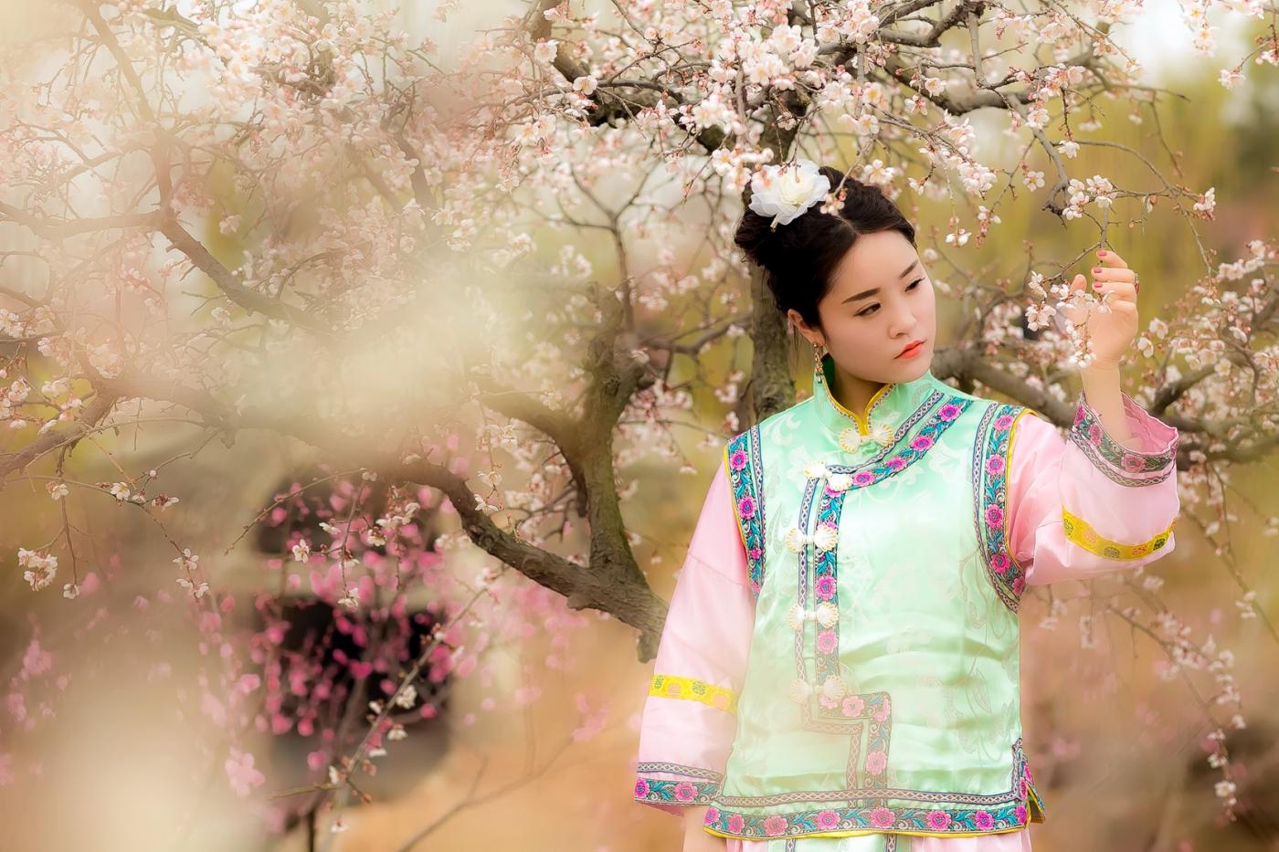沂水雪山梅园走来一群赏梅踏春的沂蒙女孩 摄影人和女孩们成为梅园一道亮丽的风景线 ..._图1-3