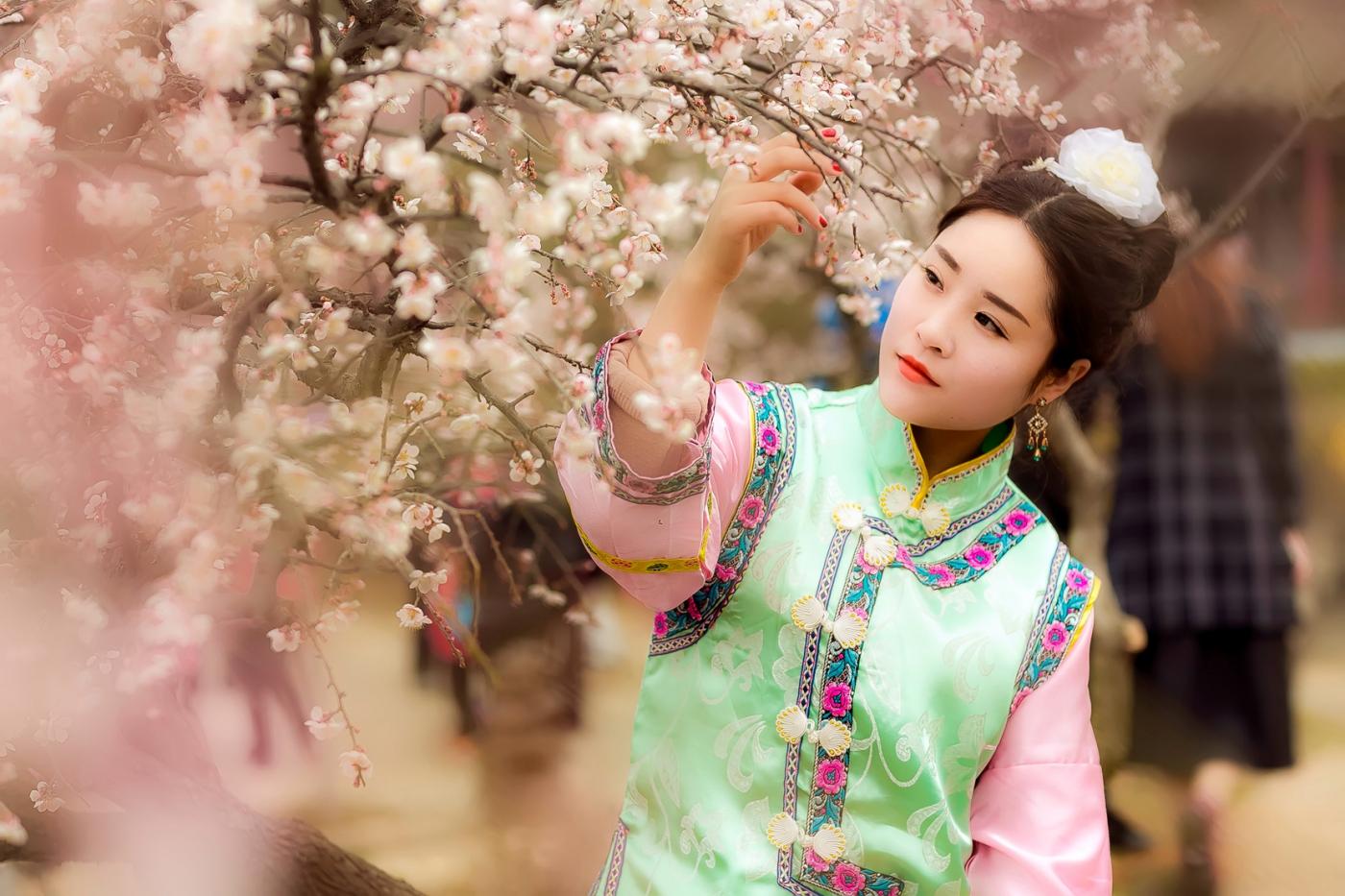 沂水雪山梅园走来一群赏梅踏春的沂蒙女孩 摄影人和女孩们成为梅园一道亮丽的风景线 ..._图1-9