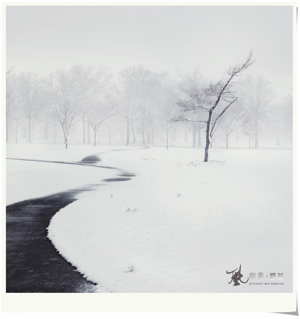【风】飞雪迎春_图1-2