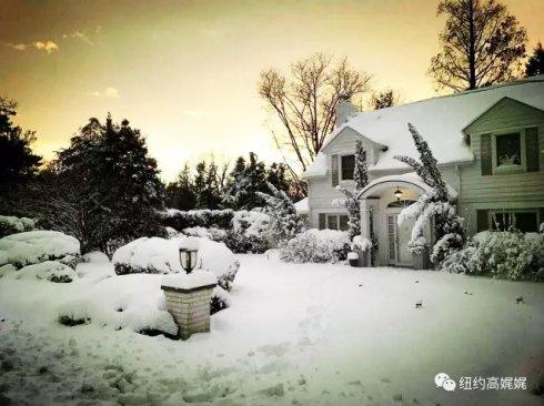 高娓娓:一下雪,纽约就美成了天堂_图1-2