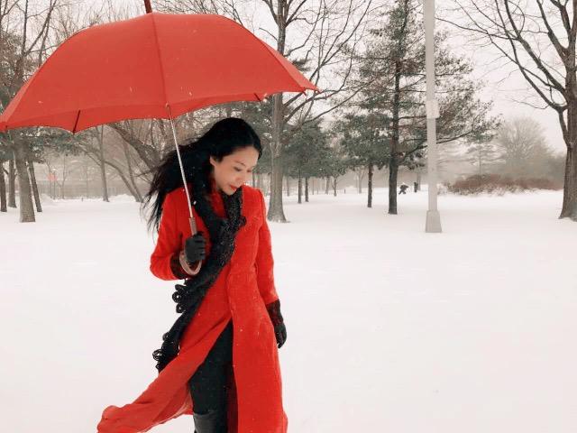 高娓娓:一下雪,纽约就美成了天堂_图1-1