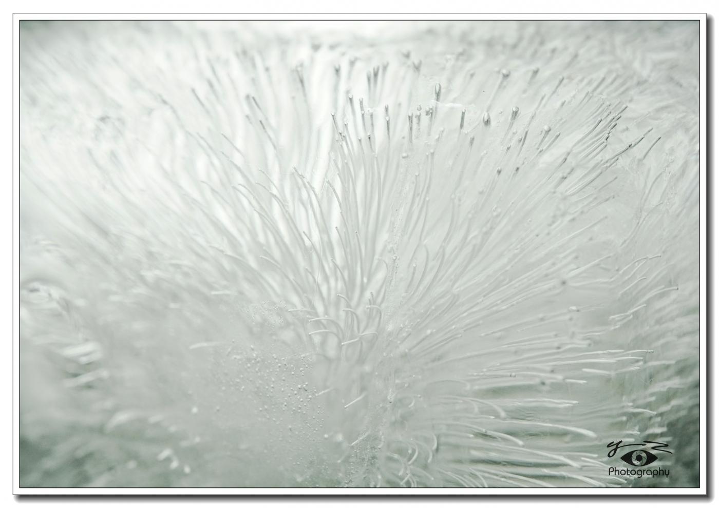 【相机人生】冰的解析之一(491)_图1-5