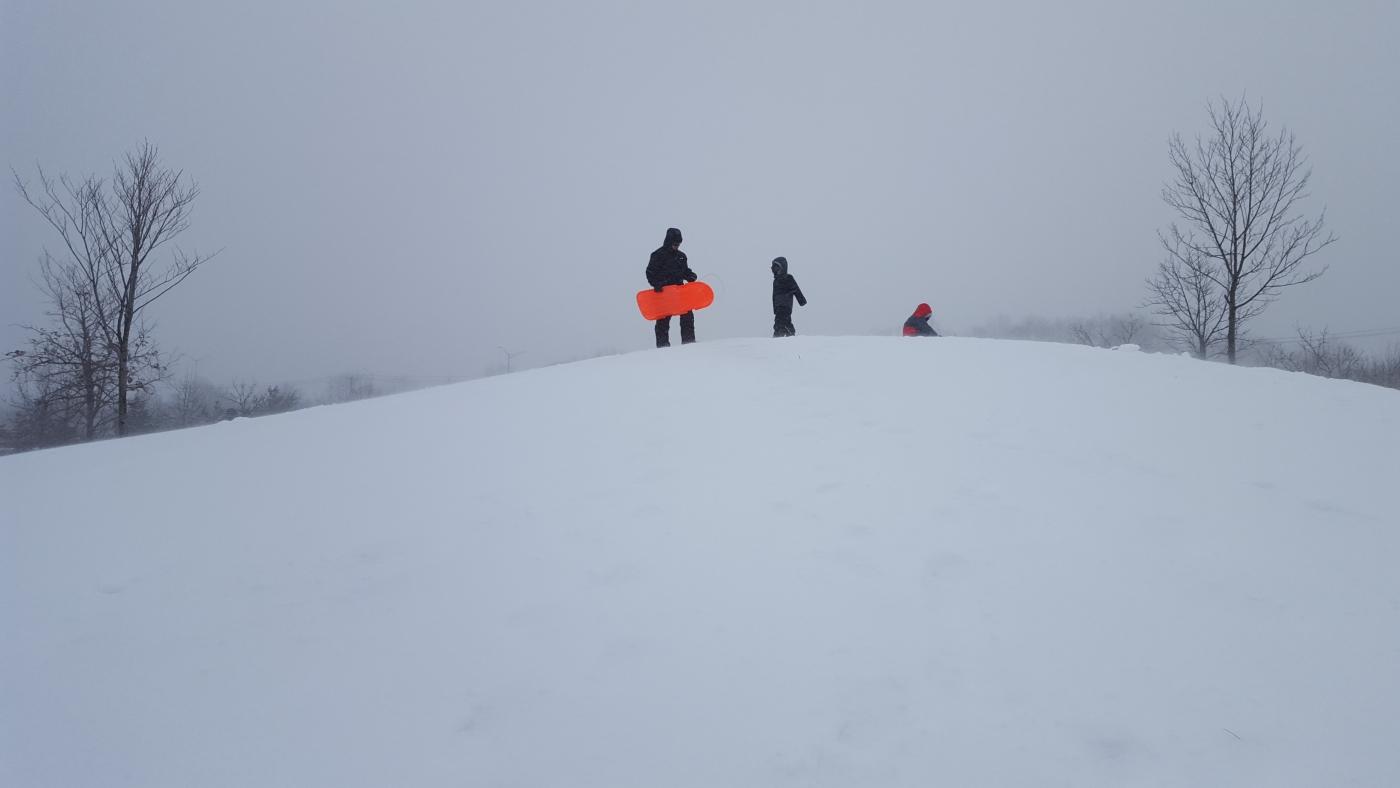 【田螺摄影】暴风雪里我捉到像诗―样的画面_图1-1