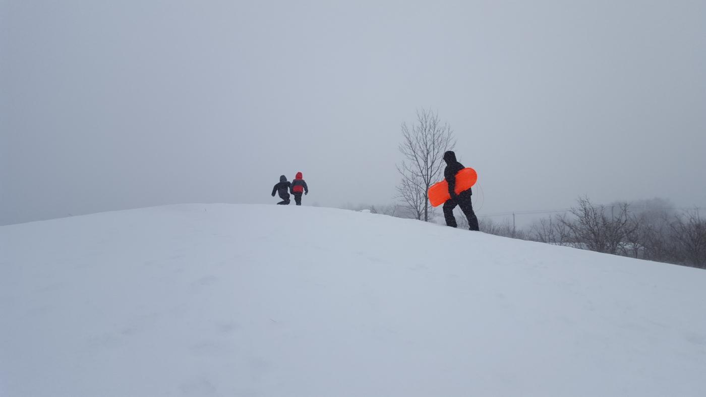 【田螺摄影】暴风雪里我捉到像诗―样的画面_图1-2