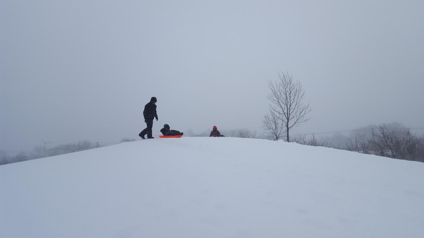 【田螺摄影】暴风雪里我捉到像诗―样的画面_图1-3