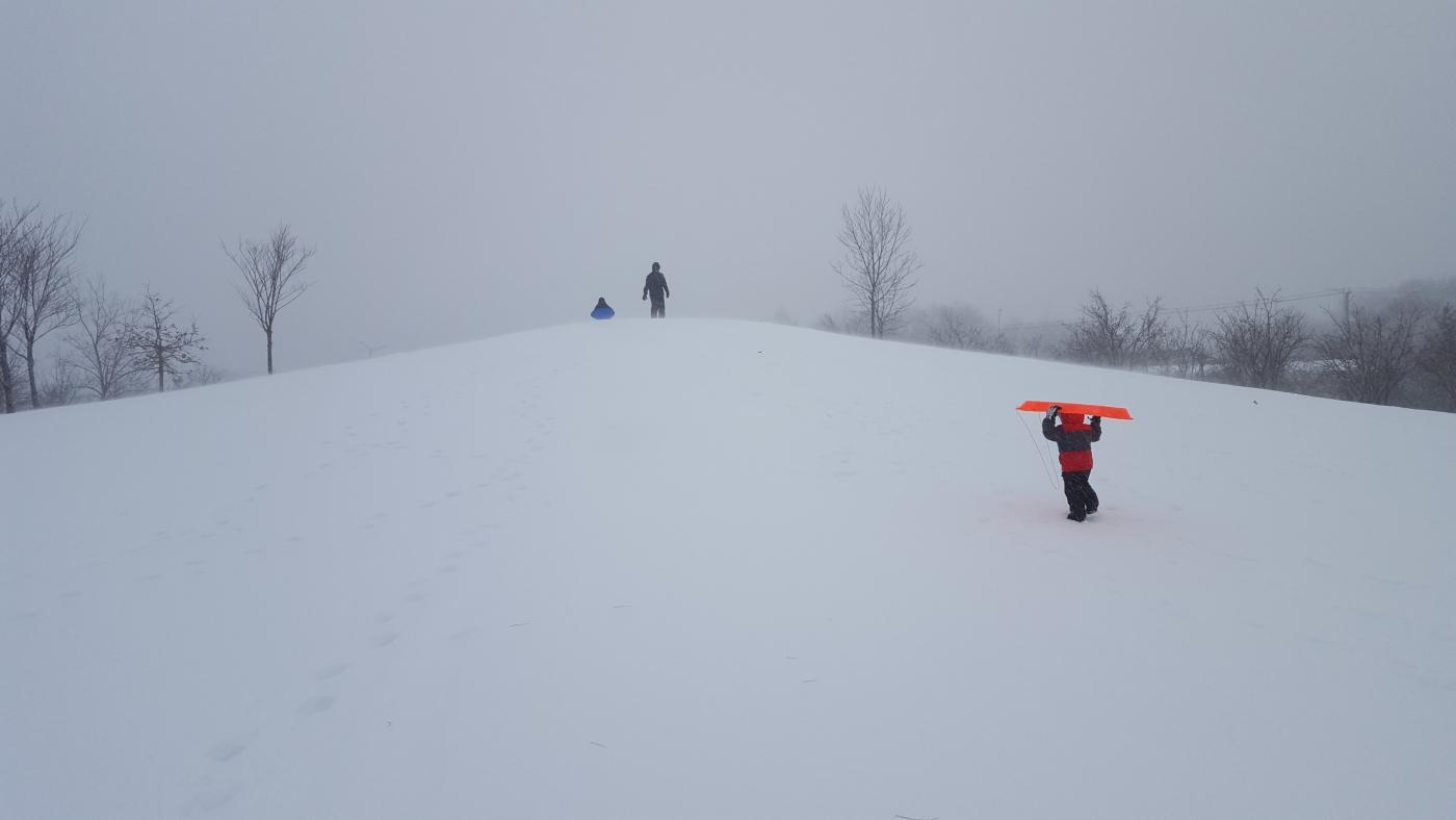 【田螺摄影】暴风雪里我捉到像诗―样的画面_图1-4