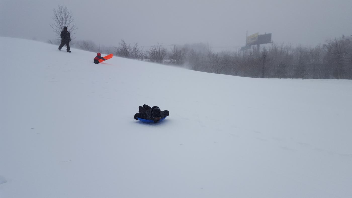 【田螺摄影】暴风雪里我捉到像诗―样的画面_图1-5