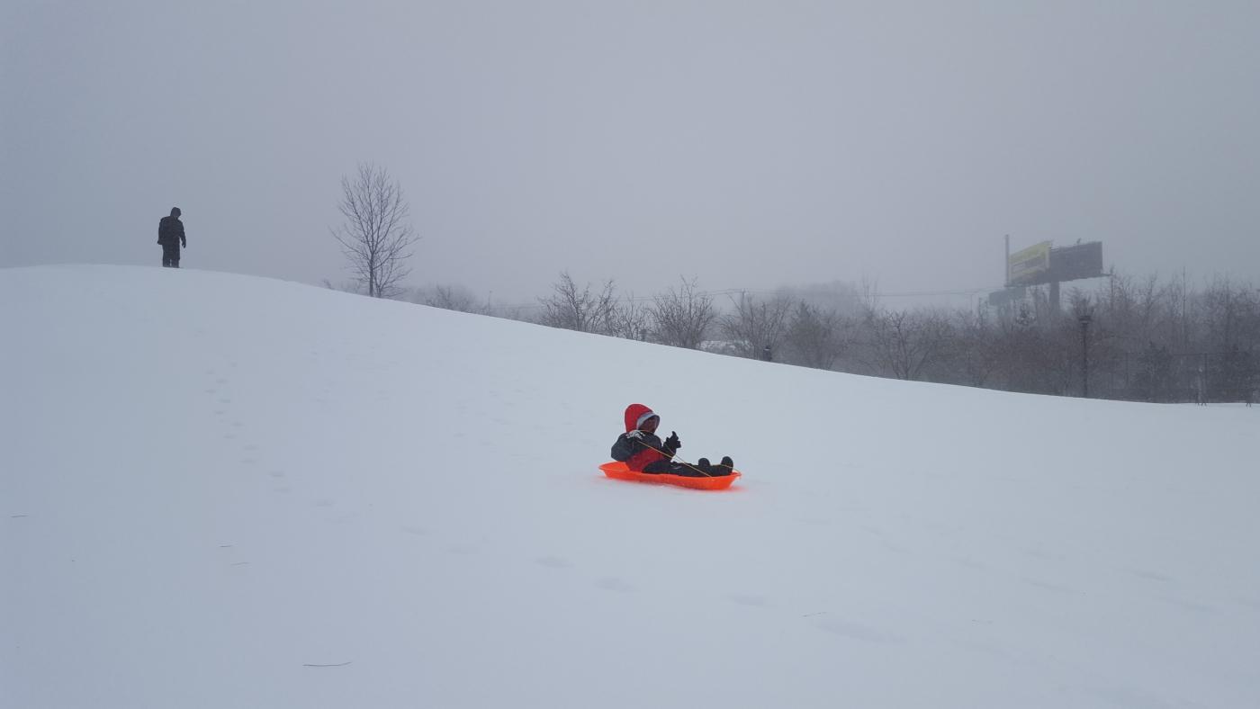 【田螺摄影】暴风雪里我捉到像诗―样的画面_图1-6