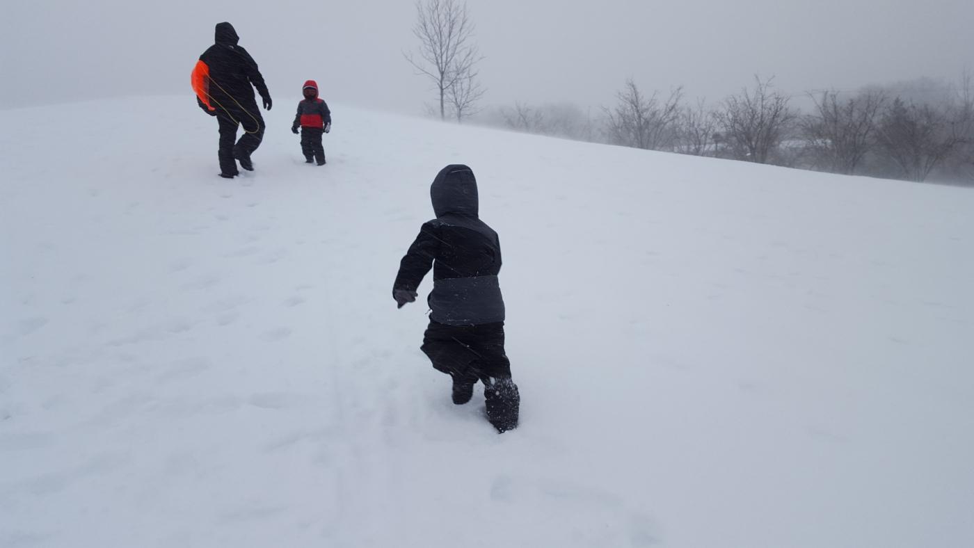 【田螺摄影】暴风雪里我捉到像诗―样的画面_图1-8