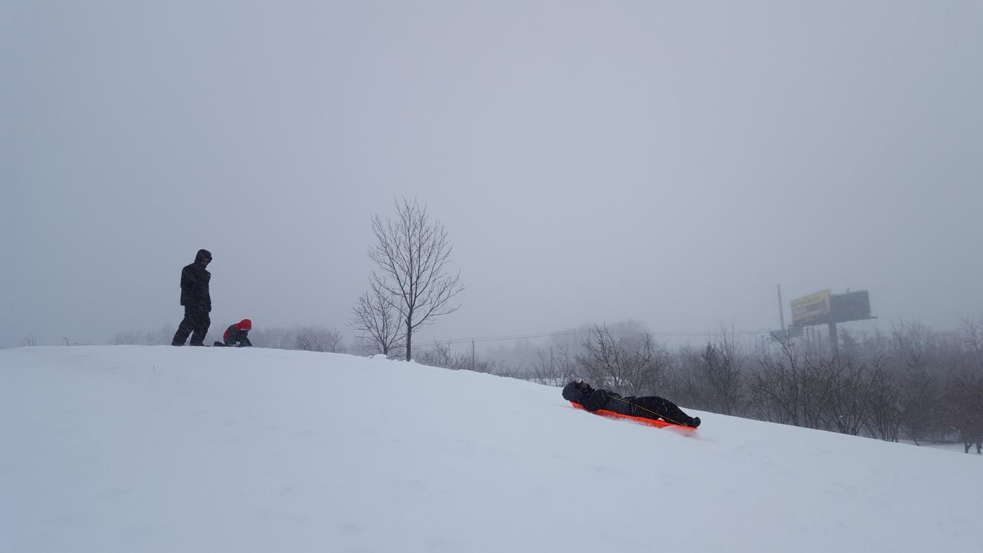 【田螺摄影】暴风雪里我捉到像诗―样的画面_图1-9