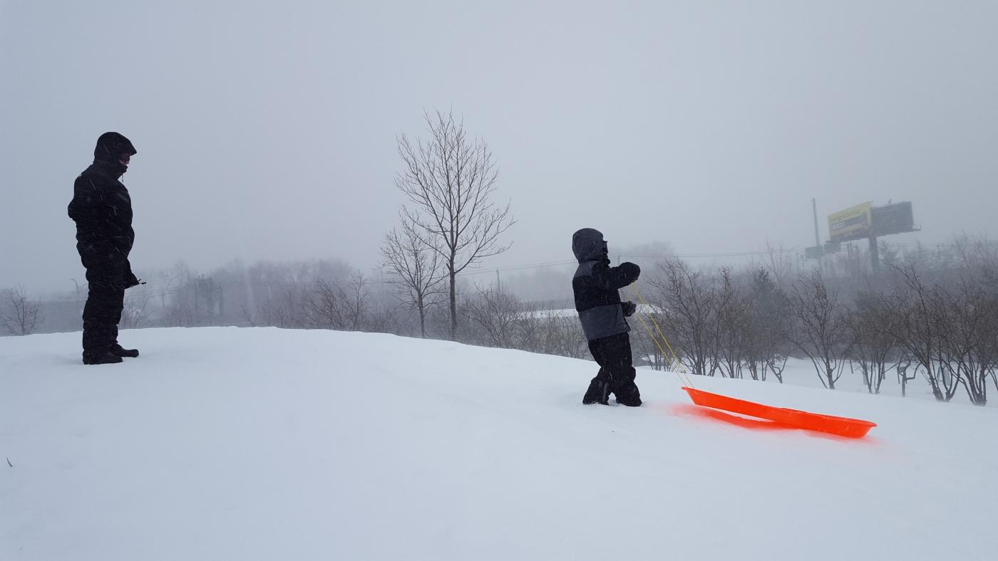 【田螺摄影】暴风雪里我捉到像诗―样的画面_图1-11