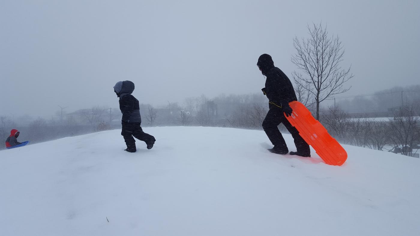【田螺摄影】暴风雪里我捉到像诗―样的画面_图1-13