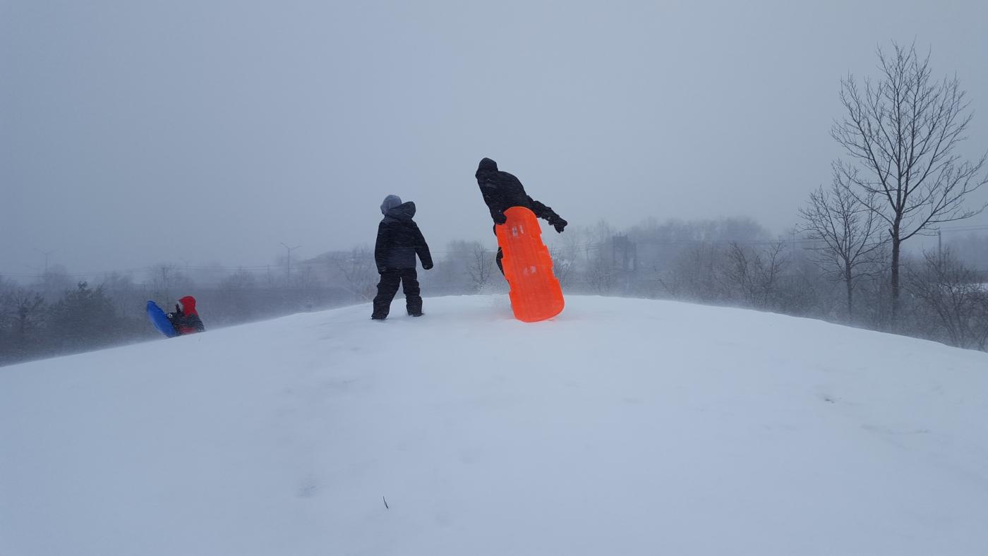 【田螺摄影】暴风雪里我捉到像诗―样的画面_图1-14