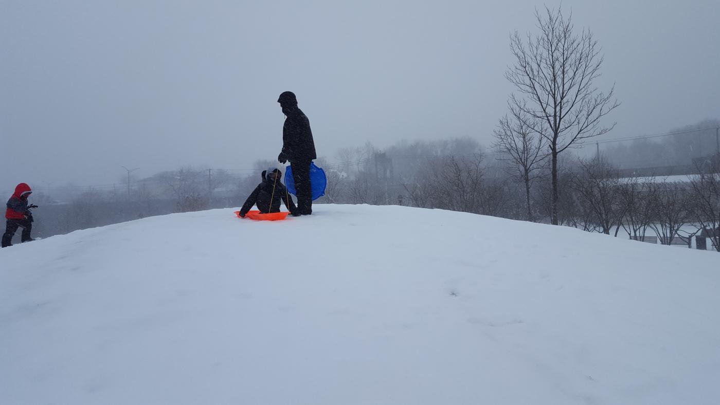 【田螺摄影】暴风雪里我捉到像诗―样的画面_图1-15