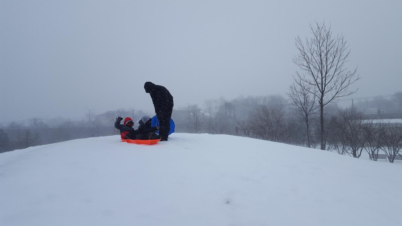 【田螺摄影】暴风雪里我捉到像诗―样的画面_图1-16