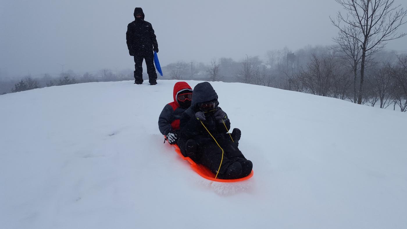 【田螺摄影】暴风雪里我捉到像诗―样的画面_图1-18