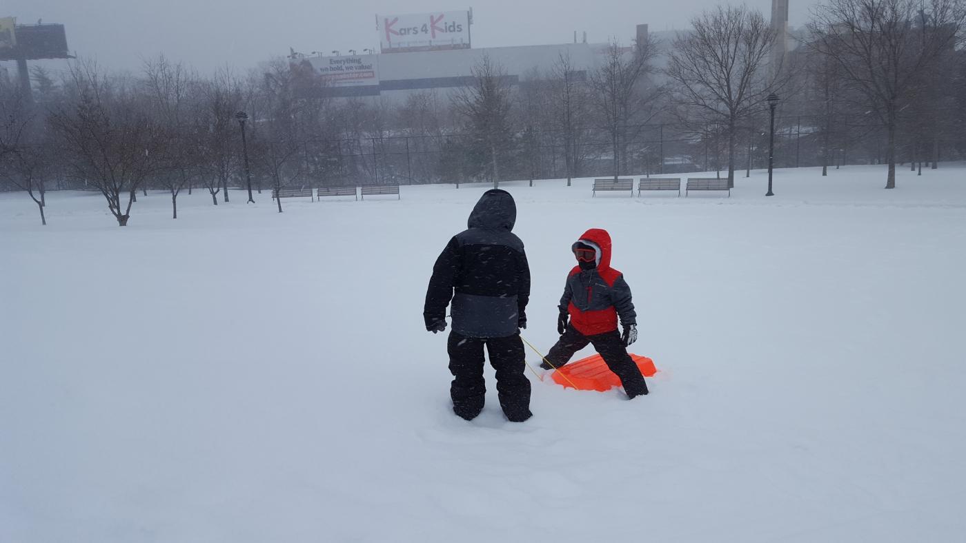 【田螺摄影】暴风雪里我捉到像诗―样的画面_图1-19