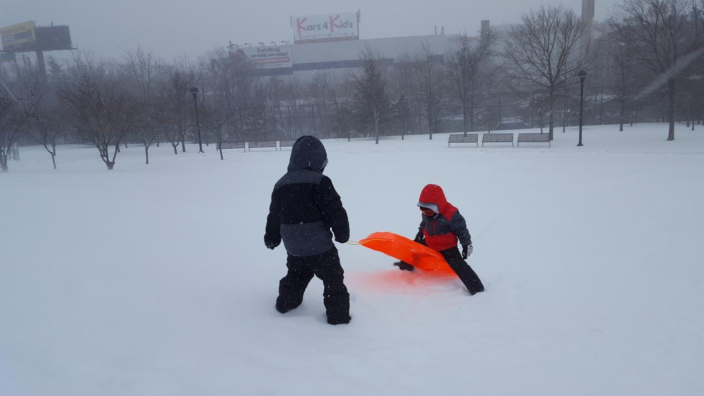 【田螺摄影】暴风雪里我捉到像诗―样的画面_图1-20