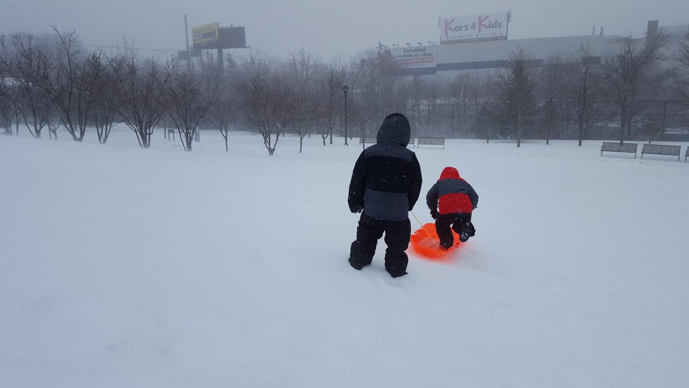 【田螺摄影】暴风雪里我捉到像诗―样的画面_图1-21