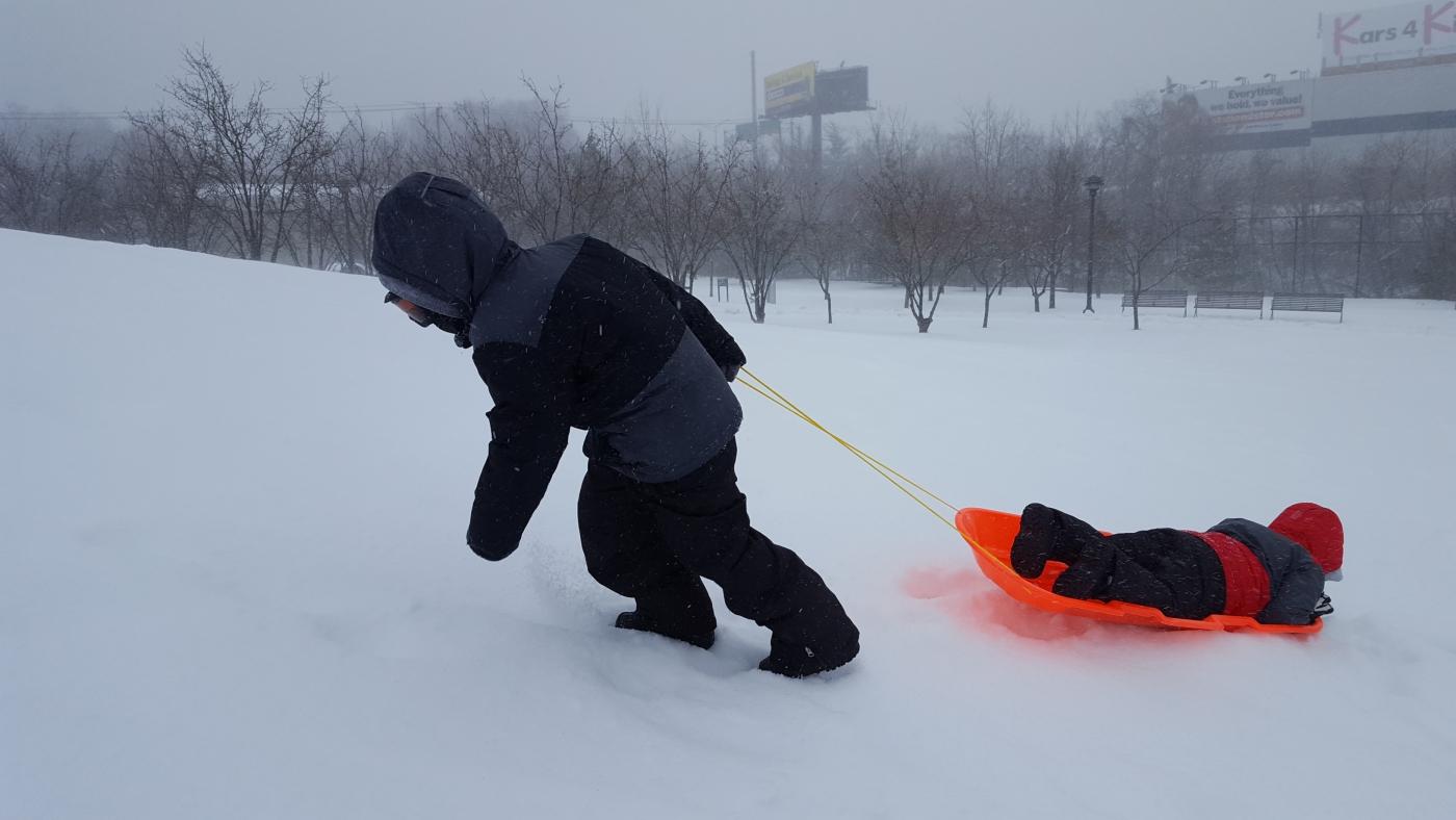 【田螺摄影】暴风雪里我捉到像诗―样的画面_图1-24