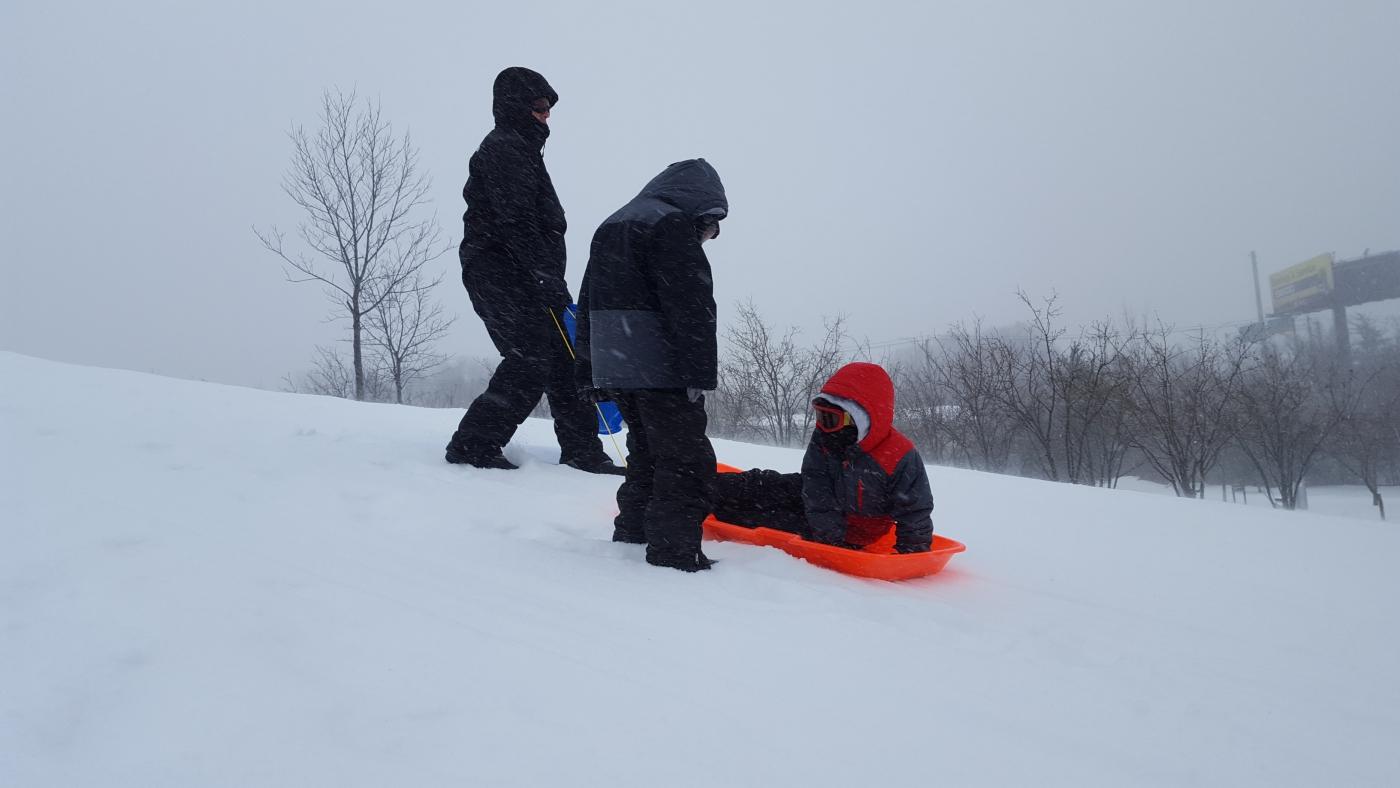 【田螺摄影】暴风雪里我捉到像诗―样的画面_图1-28