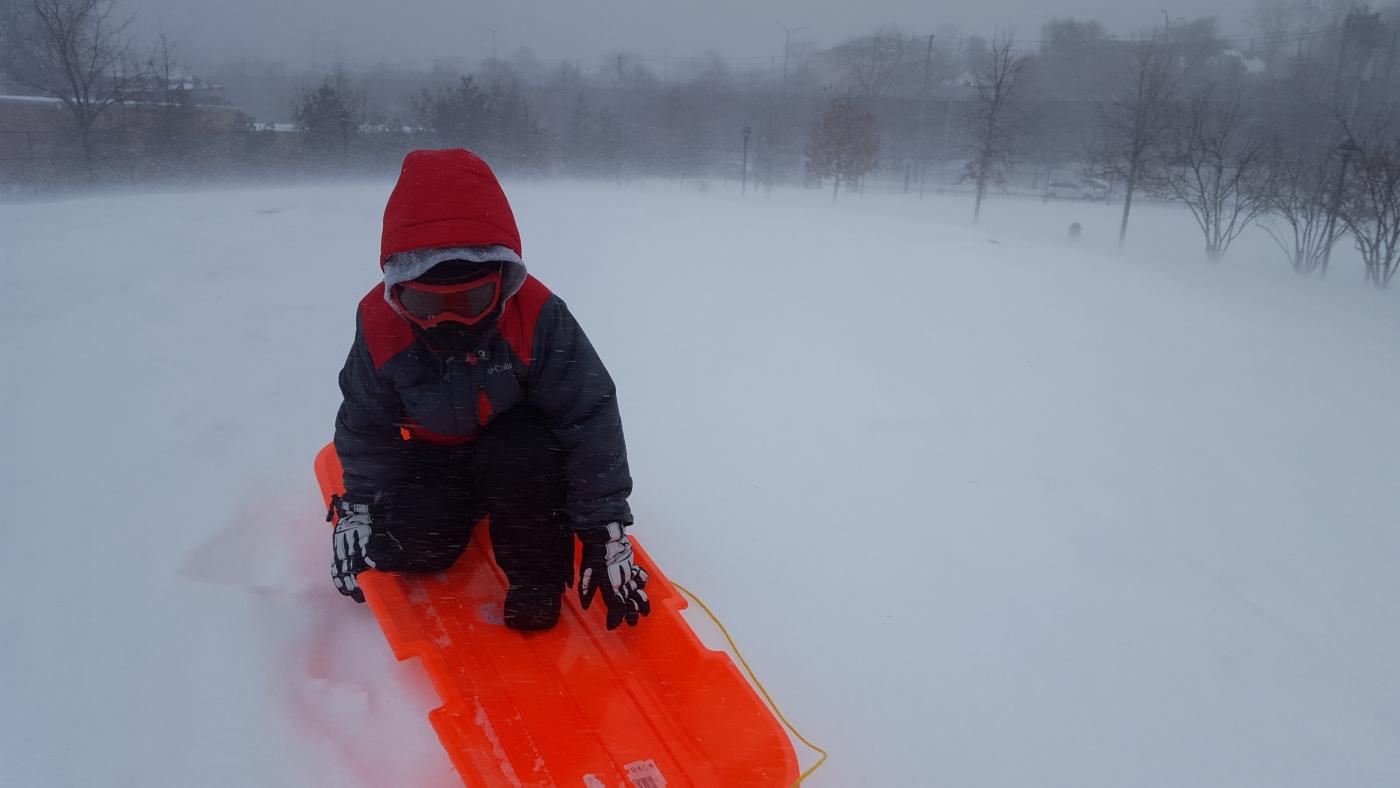 【田螺摄影】暴风雪里我捉到像诗―样的画面_图1-32