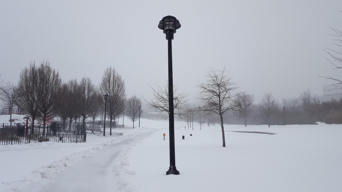 【田螺摄影】暴风雪里我捉到像诗―样的画面_图1-35