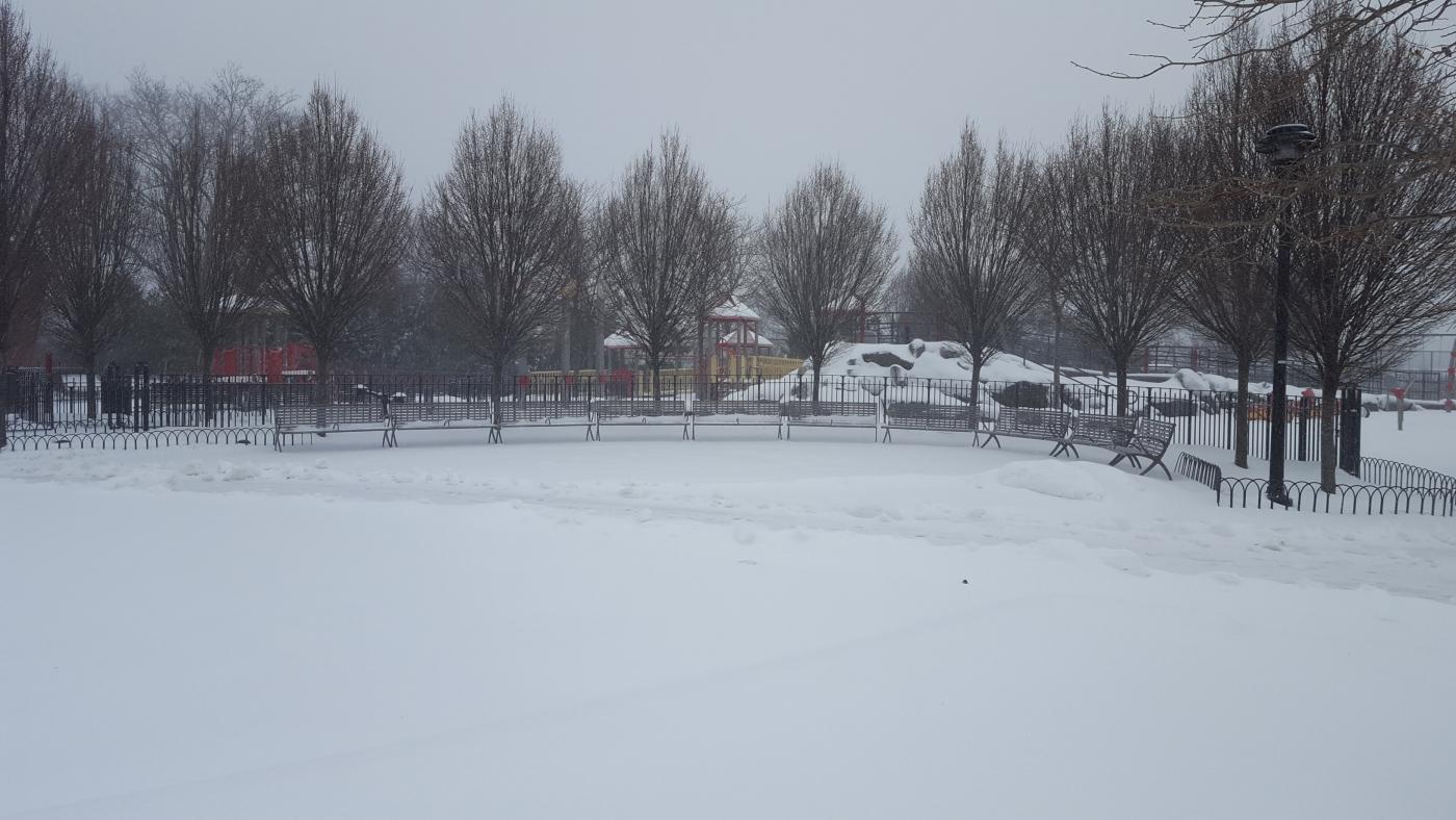 【田螺摄影】暴风雪里我捉到像诗―样的画面_图1-36