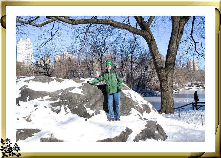 暴风雪后的中央公园,成为冰雪世界(2017-3-17)_图1-3