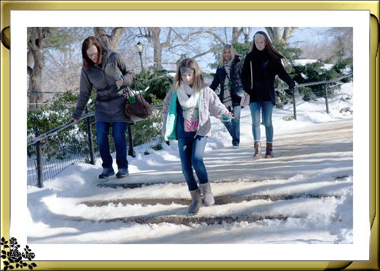 暴风雪后的中央公园,成为冰雪世界(2017-3-17)_图1-5