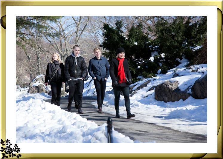暴风雪后的中央公园,成为冰雪世界(2017-3-17)_图1-6