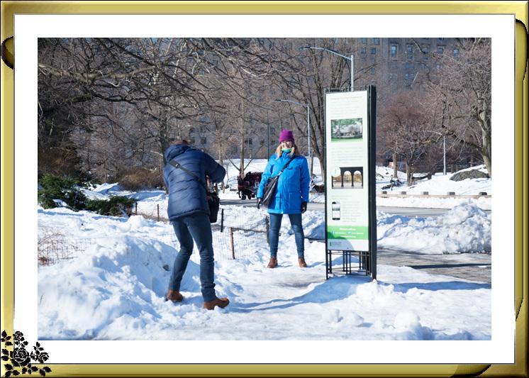 暴风雪后的中央公园,成为冰雪世界(2017-3-17)_图1-7
