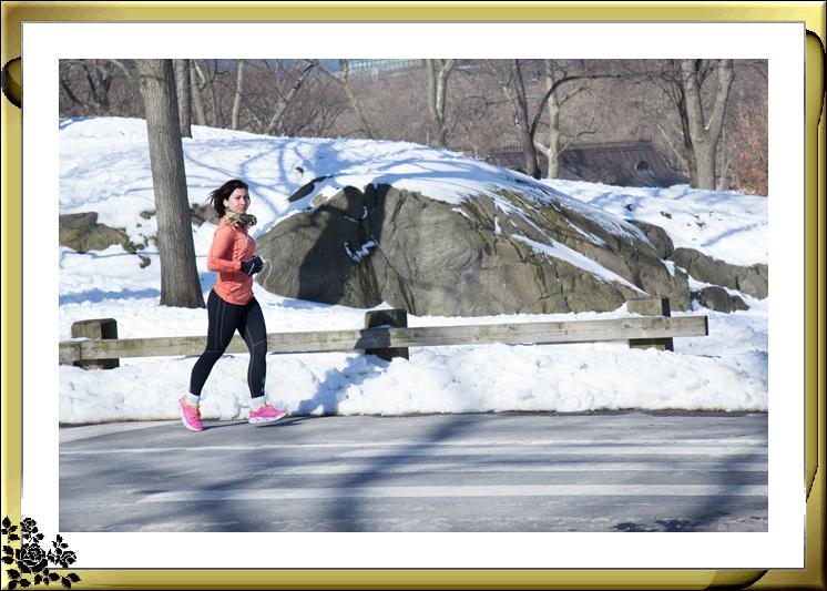 暴风雪后的中央公园,成为冰雪世界(2017-3-17)_图1-8