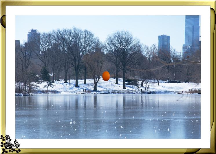 暴风雪后的中央公园,成为冰雪世界(2017-3-17)_图1-11