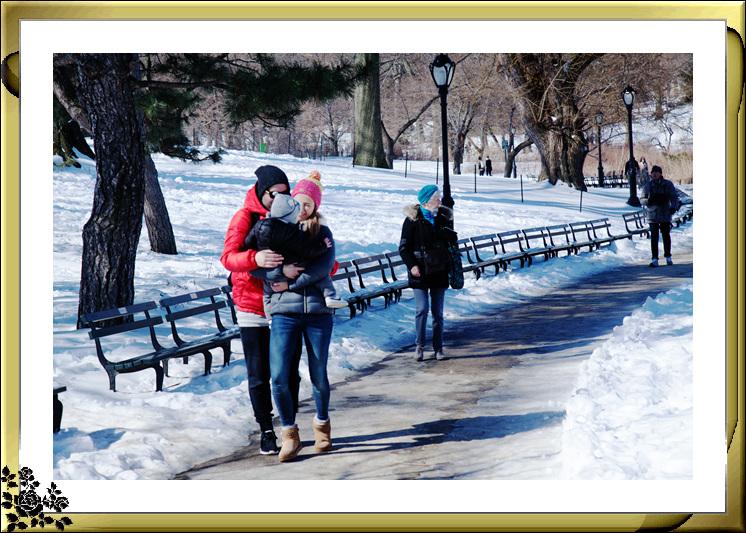 暴风雪后的中央公园,成为冰雪世界(2017-3-17)_图1-13