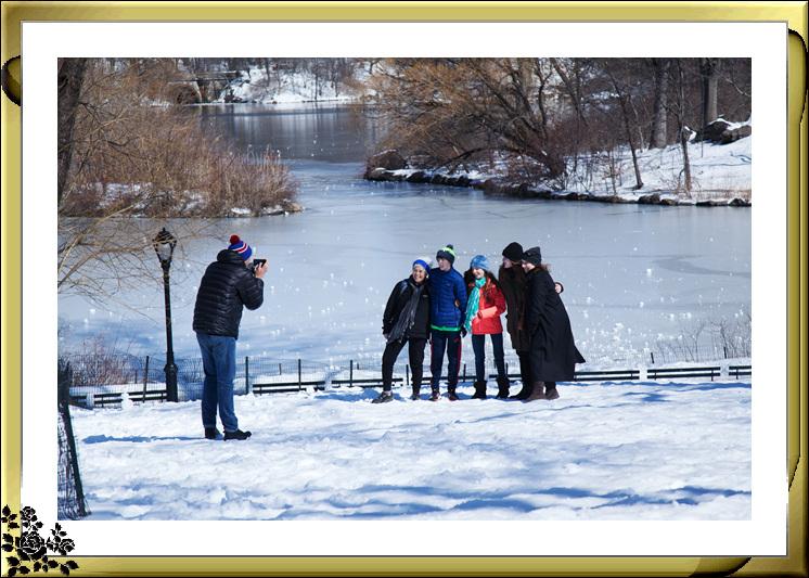 暴风雪后的中央公园,成为冰雪世界(2017-3-17)_图1-15