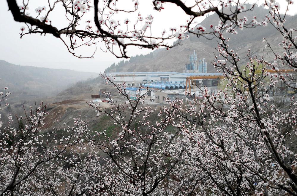 杏花谷  半日游_图1-12