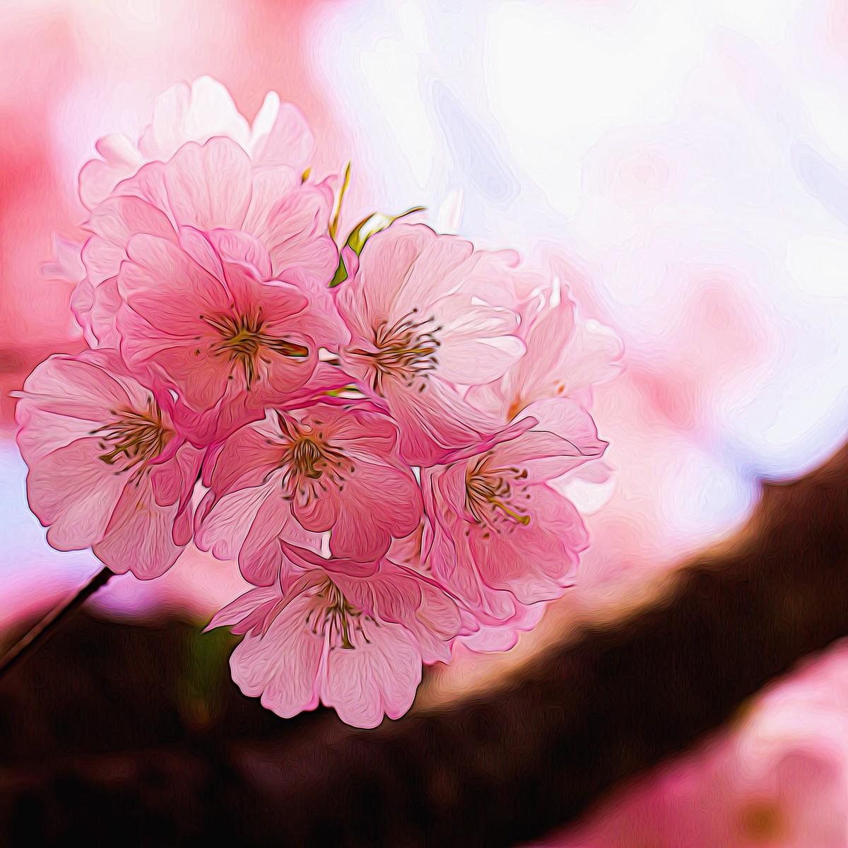 迎候春天_图1-2